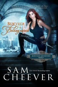 Bedeviled&Beleaguered,Book3_Nook